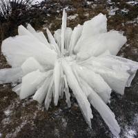 « Fleur de glace », 2005, Campbellton, N.-B.