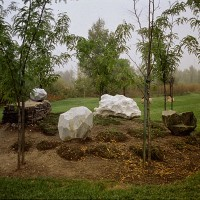 « Jardin de pierres », 2000, calcaire, marbre, serpentine, féviers et thym, Symposium impression/expression urbaines, Gatineau, Québec