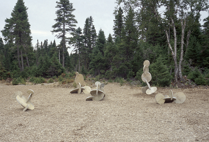 « Jardin », 2002, calcaire, Île d'Anticosti, Québec