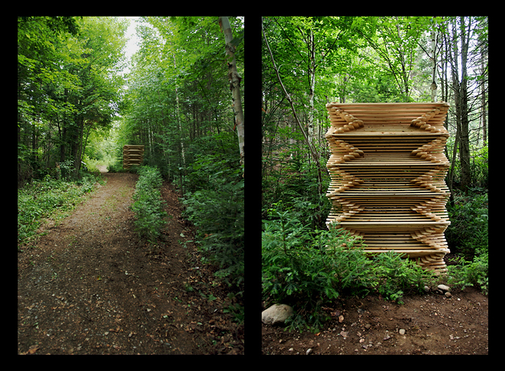 « Vaisseau », 2009, planches d'épinettes et plantation de sapins baumiers, symposium international d'art in situ de la Fondation Derouin, Québec